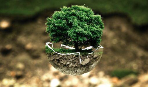 Risques environnementaux : Un regard sur les risques pour les propriétaires