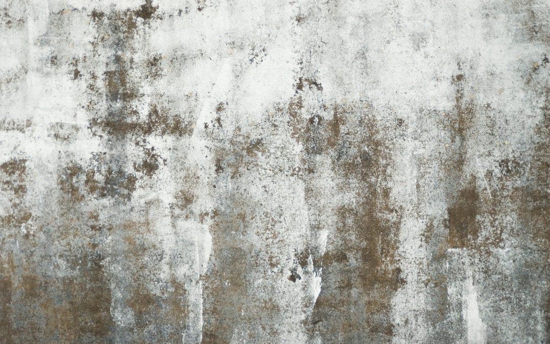 Le gris est le nouveau beige dans les couleurs de la maison